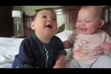 Two cute babies laughing